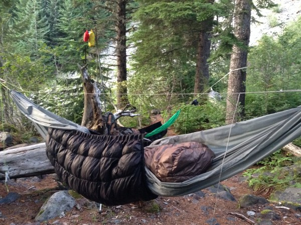 Dick's Creek Campsite Wonderland Trail