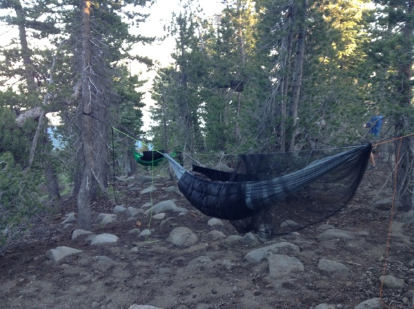SweetPea's hammock set up with the underquilt and bug net on the Tahoe Rim Trail